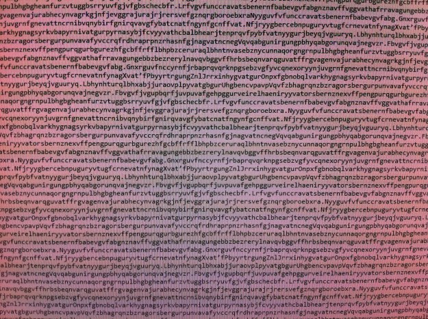 Encoded text on computer screen